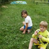 kapoenenkamp 2014 - HPIM5748.JPG