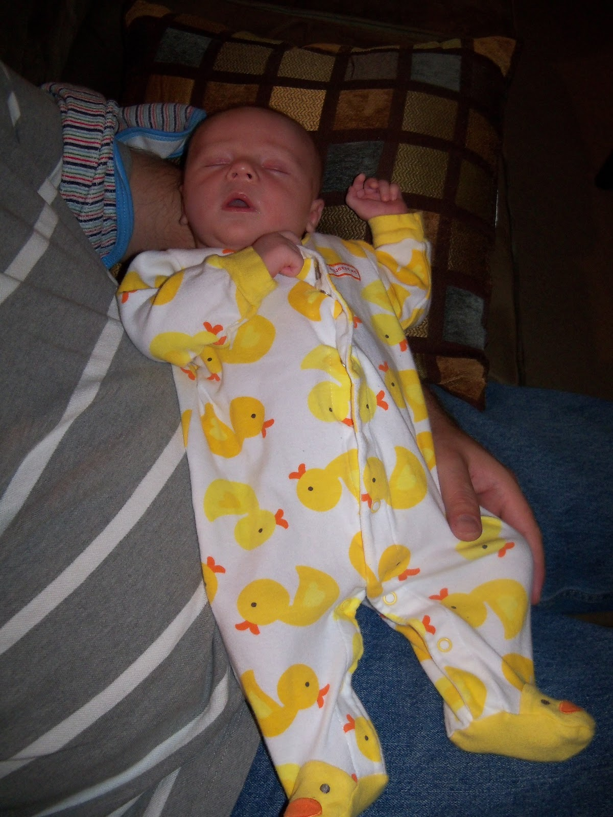 Fathers Day 2012 - 115_2912.JPG
