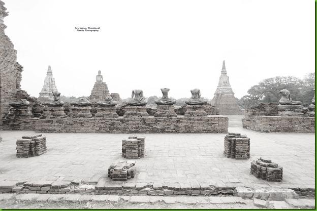 Thai31