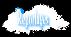 les reportages d'Handiane