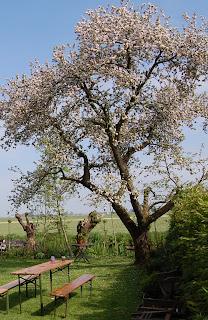 """""""Het kleine Paradijs"""" voorjaar"""