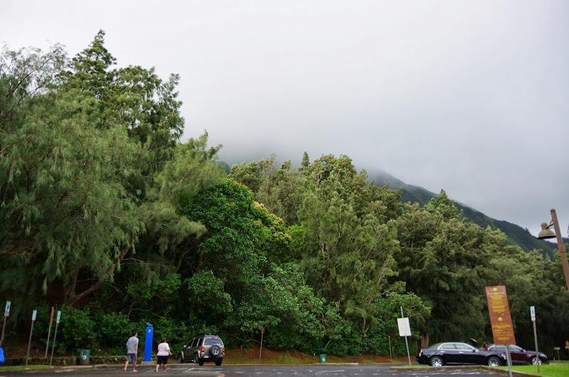 06-18-13 Waikiki, Coconut Island, Kaneohe Bay - IMGP6954.JPG