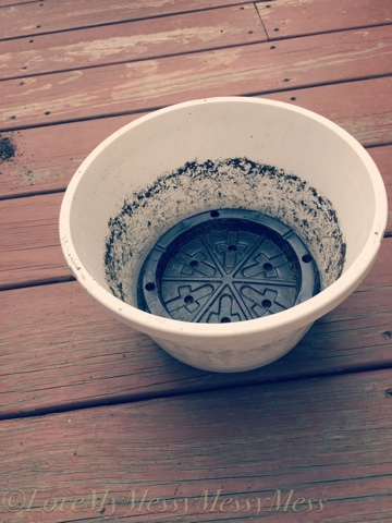 Fill The Planting Basket Halfway Up Pot With Some Potting Soil Don T Pat It Down Or Make To Compact Yet You Want Give Roots Room Spread