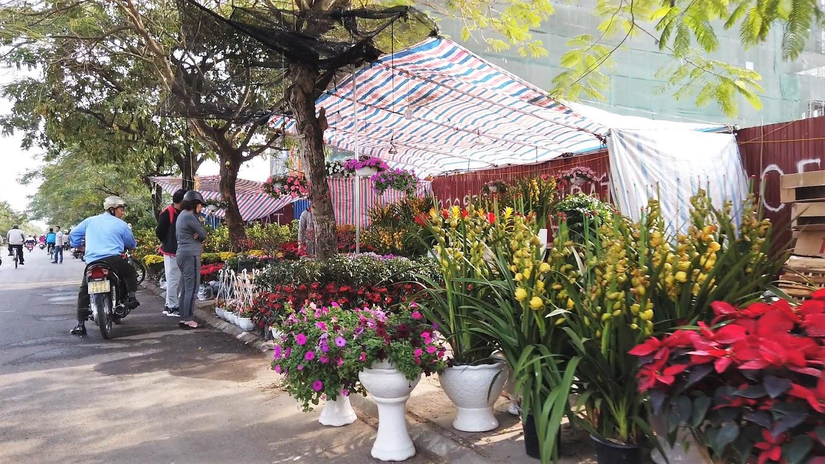Chợ hoa Tết 2020 đường Lê Hồng Phong ở Hải Phòng 7
