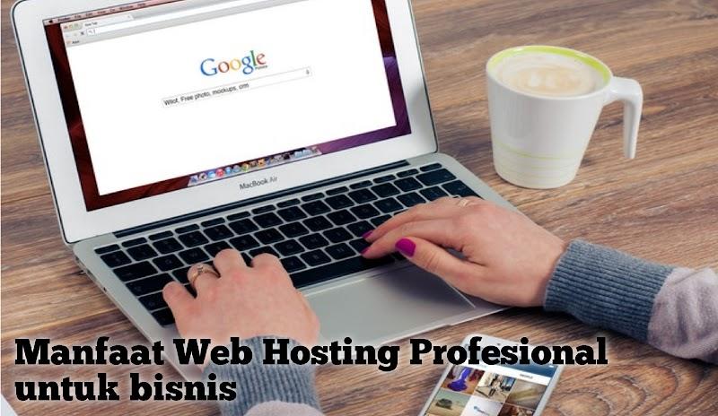 Manfaat Web Hosting Profesional untuk bisnis