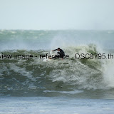 _DSC8795.thumb.jpg