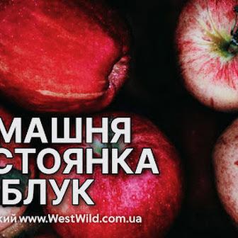 Домашня настоянка із яблук