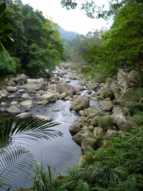 TAIWAN.Dans la région de Miaoli - P1080401.JPG