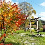 Podzimní Park, říjen 2014