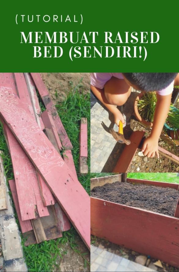 Membuat Raised Bed Sendiri (Tutorial)