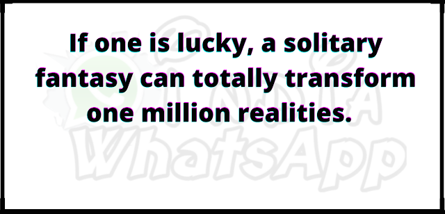 If one is lucky, a solitary fantasy can totally transform one million realities.