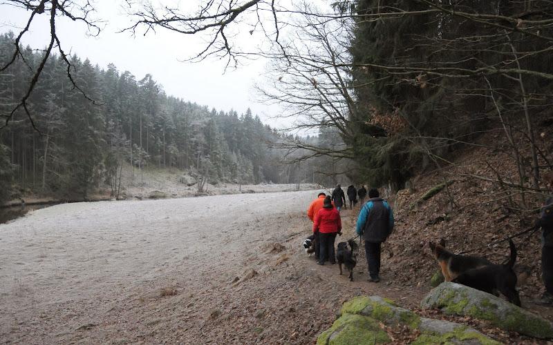 20140101 Neujahrsspaziergang im Waldnaabtal - DSC_9820.JPG