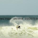 _DSC0273.thumb.jpg