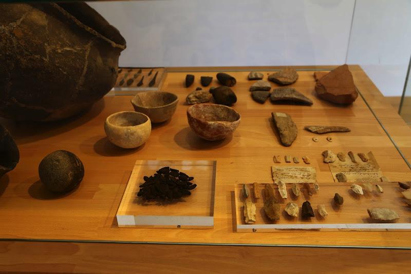 Museo flechas