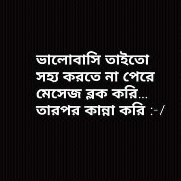 blogger Bangla Emotional Status ~ Kashem Mir Status