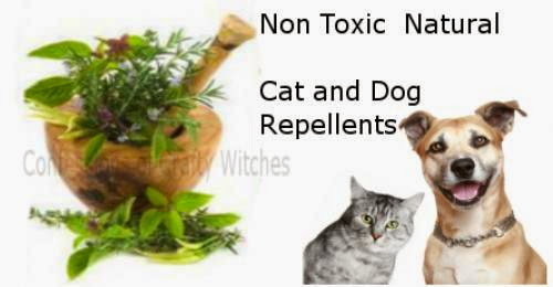 Non Toxic Natural Cat And Dog Repellents