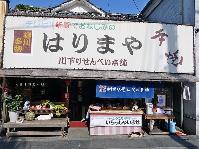 37日本九州自由行 日本威尼斯 柳川遊船  蒸籠鰻魚飯  みのう山荘-若竹屋酒造場