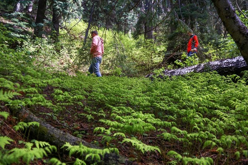revett lake trail-12