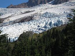 Roosevelt and Coleman glaciers on Mt Baker.