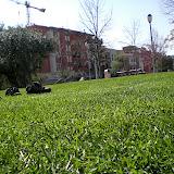 Sortida Sant Salvador de les espasses 2006 - CIMG8447.JPG