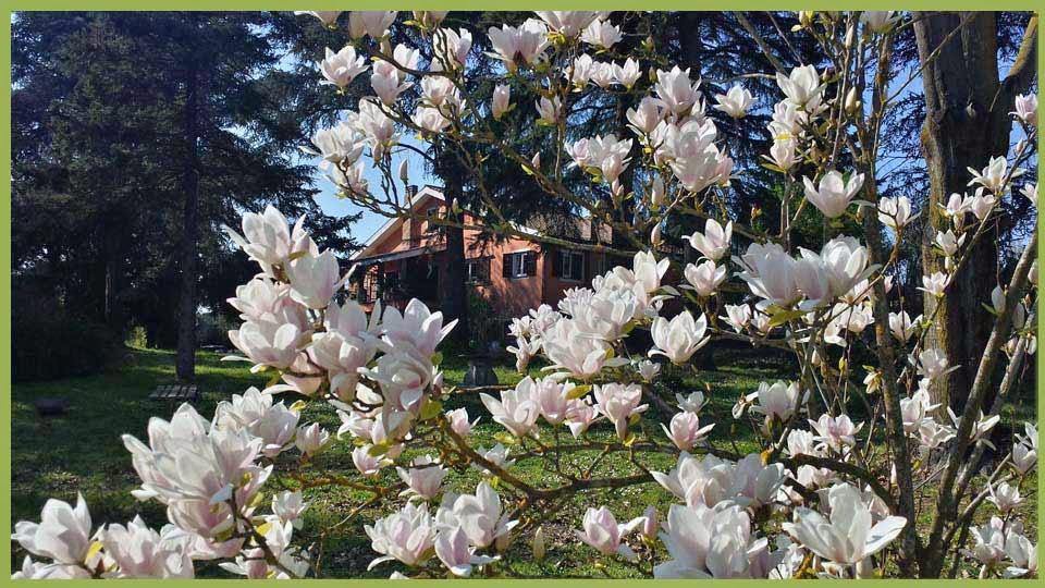 panoramica-casa-primavera.jpg