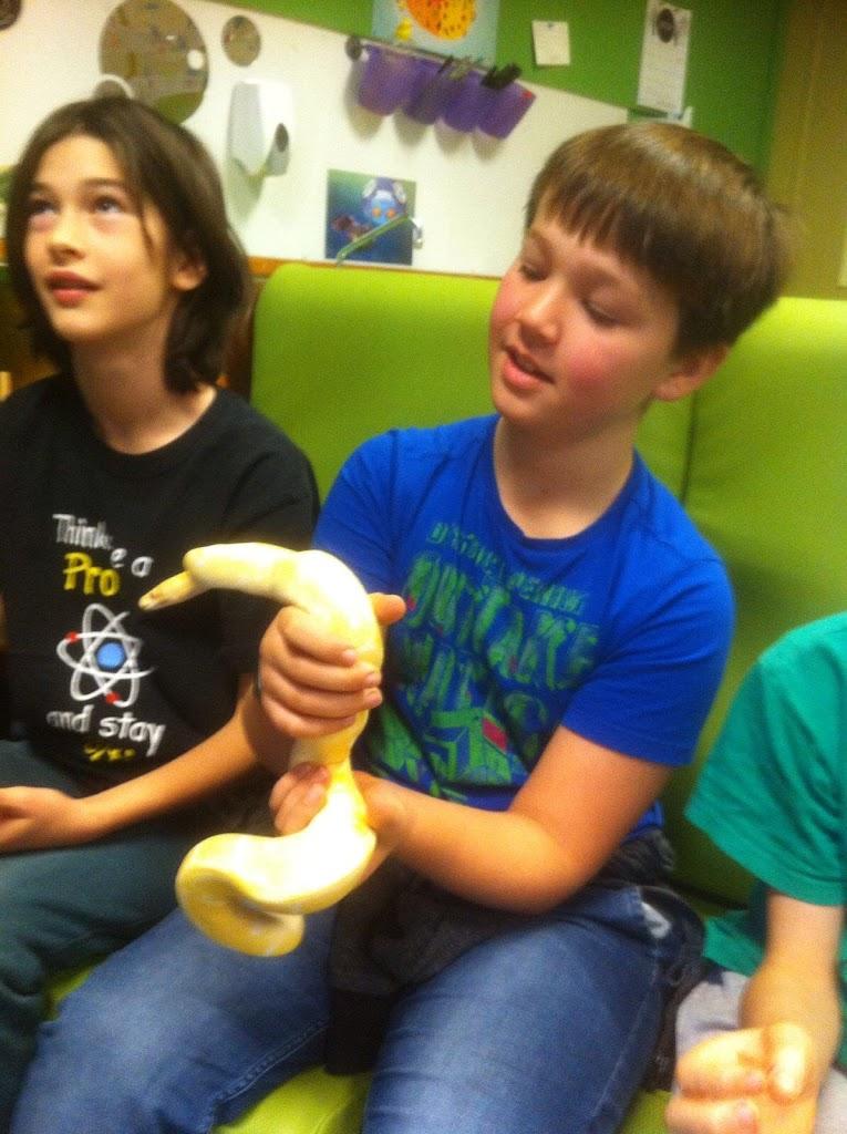 Slangen op bezoek bij de Kikkers - IMG_9204.JPG