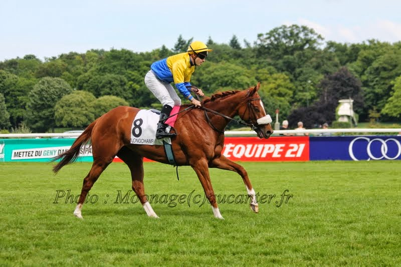 Photos Longchamp 25-05-2014 IMG_1457