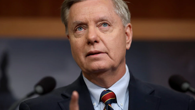 'President Trump Should Not Concede': Lindsey Graham Urges Trump To 'Fight Back' Against Alleged Voter Fraud