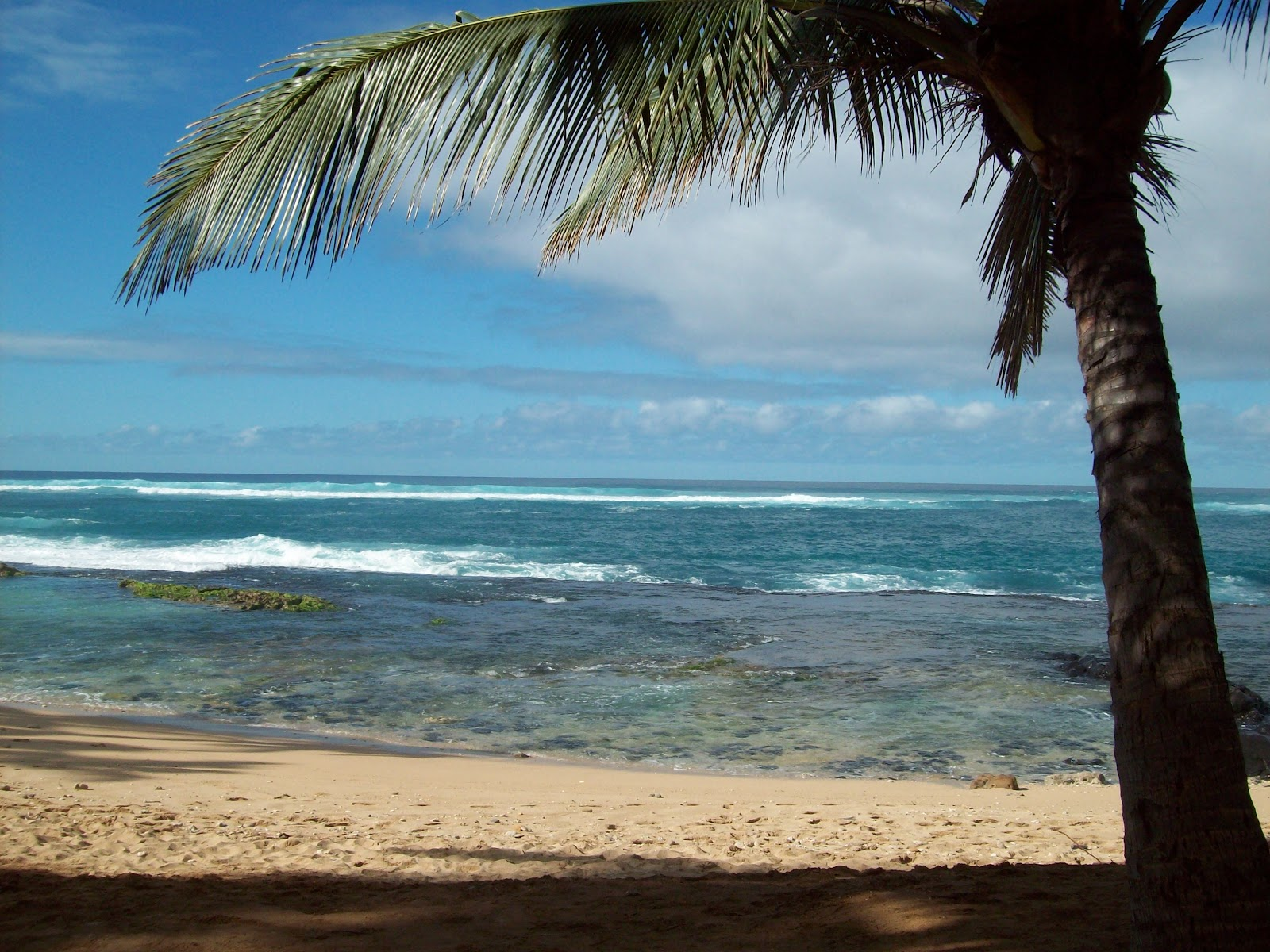 Hawaii Day 8 - 114_2228.JPG