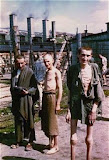 Olocausto - Survivors%2Bin%2Bthe%2BRussian%2BCamp%2Bsection%2Bof%2BMauthausen..jpg