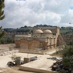Temple Mount's profile photo