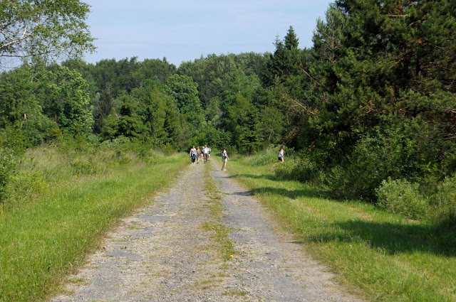 W Polanach Surowicznych - 18.06.2011_034.jpg