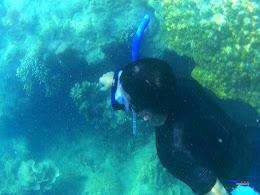 pulau harapan, 5-6 september 2015 skc 034