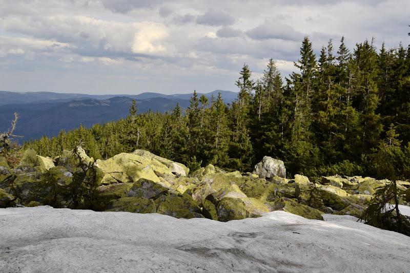 карпаты горганы