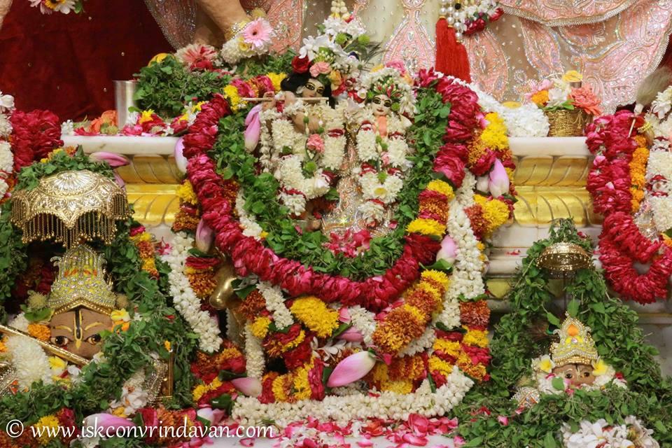 ISKCON Vrindavan Shringar Deity Darshan 29 May  2016 (7)