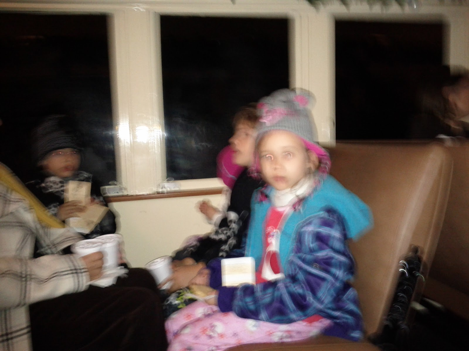 Polar Express Christmas Train 2011 - IMG_20111210_202636.jpg