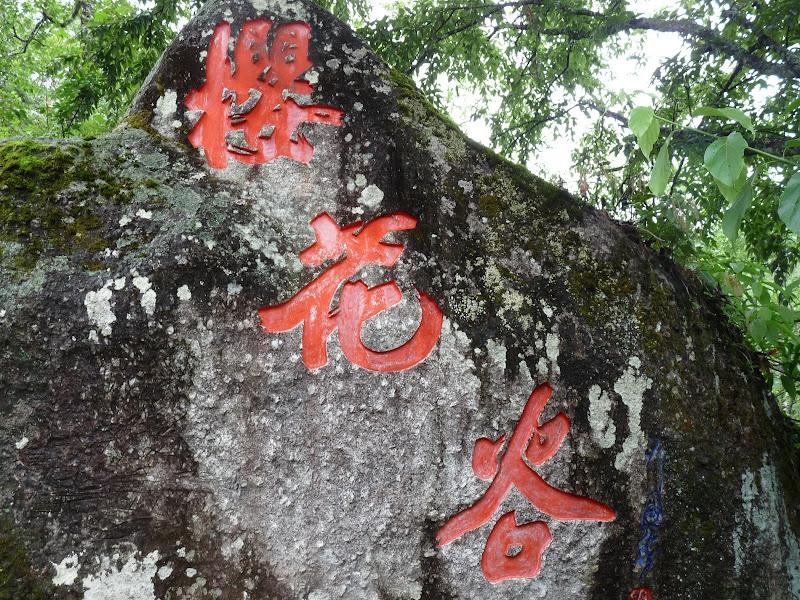 Chine .Yunnan,Menglian ,Tenchong, He shun, Chongning B - Picture%2B821.jpg
