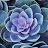Zooks 64 avatar image