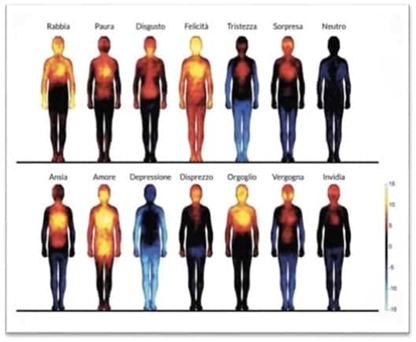 fisiologia emozioni