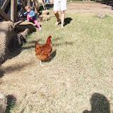 Blessington Farms - 116_5065.JPG