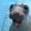 Christopher McGill's profile photo