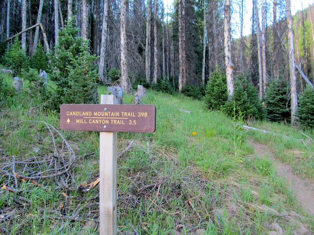 Beginning of the Candland Mountain trail