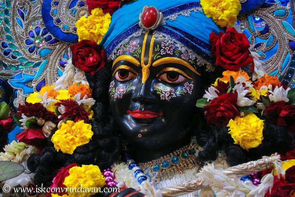 ISKCON Vrindavan Deity Darshan 10 Jan 2017 (9)
