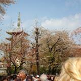 2014 Japan - Dag 11 - jordi-DSC_0907.JPG
