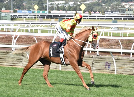 aus guineas_mighty boss 4
