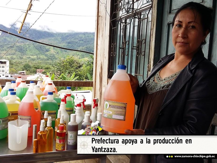 PREFECTURA APOYA A LA PRODUCCIÓN EN YANTZAZA