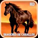 Imagenes de Caballos icon