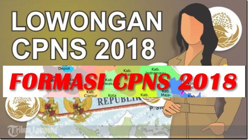 formasi lowongan CPNS 2018
