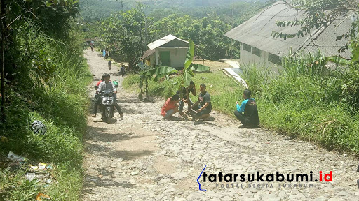 Jalan Ancur Di 2 Kecamatan, Warga Sukabumi Tanami Pohon Pisang