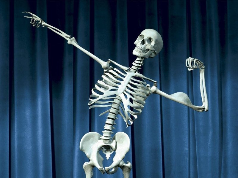 Healthy Bone Skelton